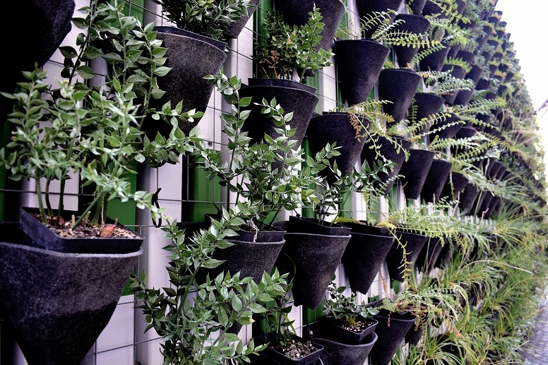 How to make vertical gardens