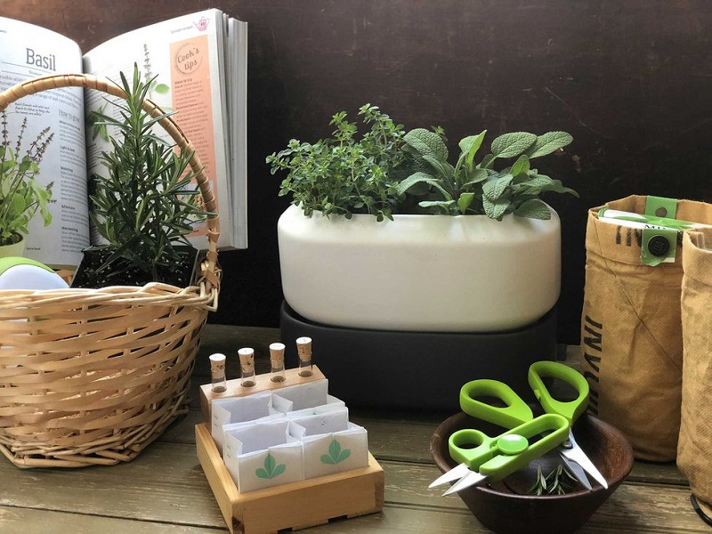 How to create the perfect gardening kit