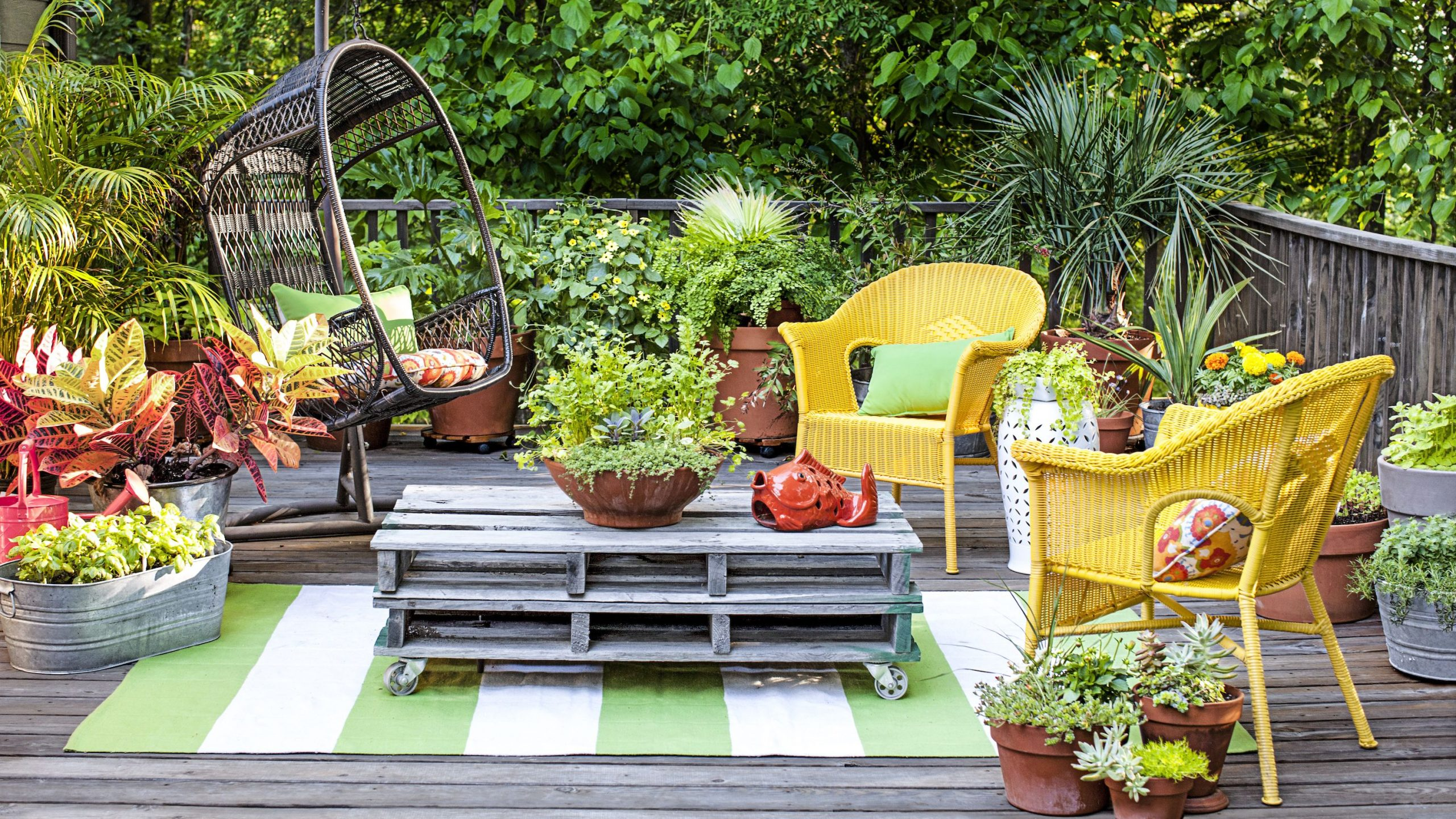 decorate the garden